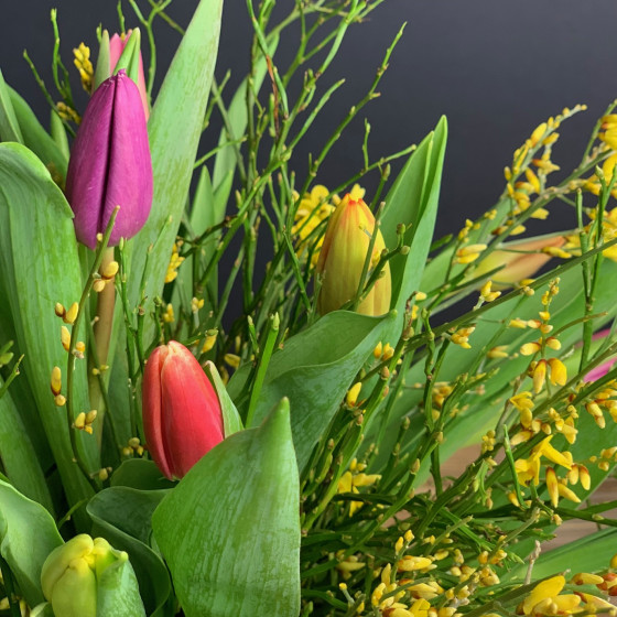 Bouquet de tulipes fraîches, Des Lys & Délices, Sion, Livraison de fleurs en Valais